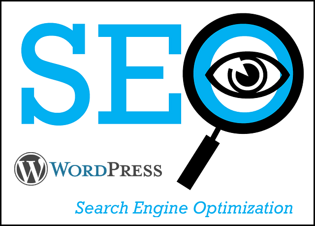 Learning WordPress SEO for Private Practices